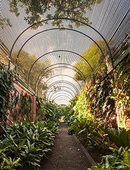 Jardin Botanico Puerto de la Cruz